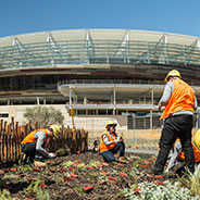 The Chevron Parkland, at the new Perth Stadium features 2.6 hectares of rehabilitated parklands, nature playgrounds, BBQ and picnic areas.